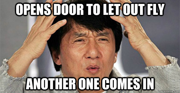 Opens door to let out fly Another one comes in - Opens door to let out fly Another one comes in  Confused Jackie Chan