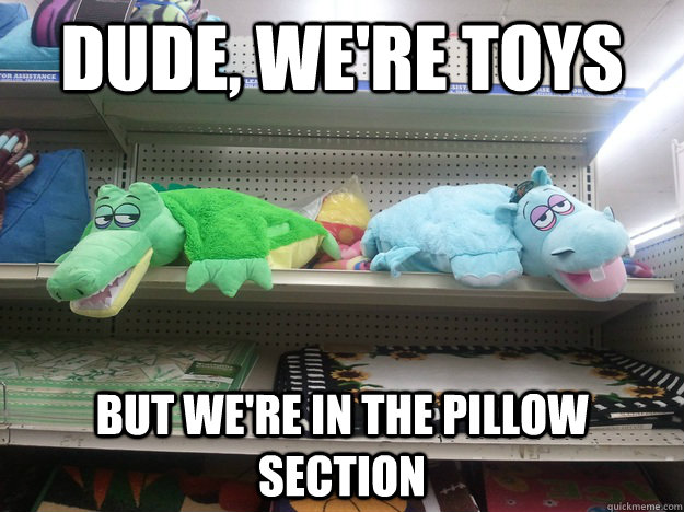 Dude, we're toys but we're in the pillow section  10 Toys