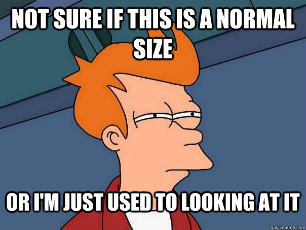 Not sure if this is a normal size Or I'm just used to looking at it  Futurama Fry