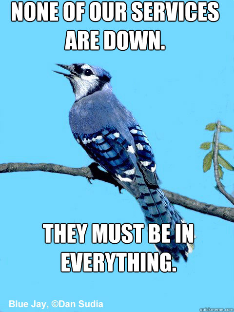 None of our services are down. They must be in EVERYthing. - None of our services are down. They must be in EVERYthing.  Blue Team Bird