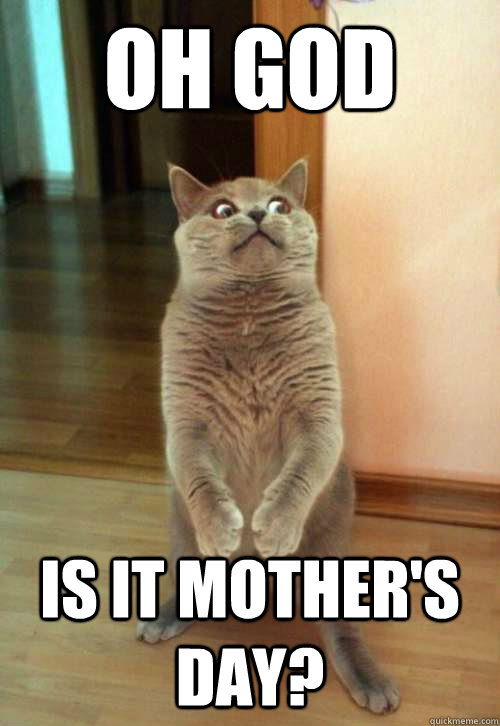 Oh God IS IT MOTHER'S DAY? - Oh God IS IT MOTHER'S DAY?  Horrorcat