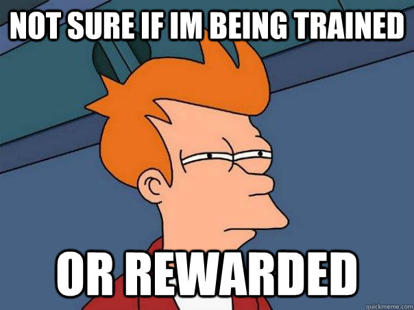 Not sure if im being trained or rewarded - Not sure if im being trained or rewarded  Futurama Fry
