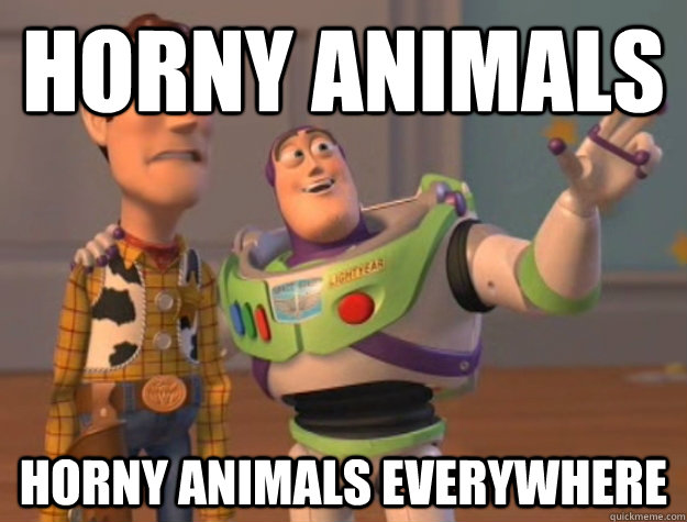 horny animals Horny animals everywhere - horny animals Horny animals everywhere  Buzz Lightyear