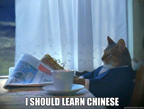 I should learn chinese -  I should learn chinese  The One Percent Cat