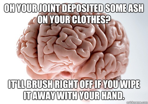 Oh your joint deposited some ash on your clothes? It'll brush right off if you wipe it away with your hand. - Oh your joint deposited some ash on your clothes? It'll brush right off if you wipe it away with your hand.  Scumbag Brain