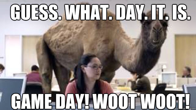 GUESS. WHAT. DAY. IT. IS. GAME DAY! WOOT WOOT! - GUESS. WHAT. DAY. IT. IS. GAME DAY! WOOT WOOT!  camel