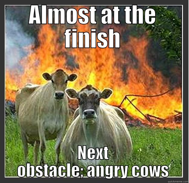 Spartan Race Cows - ALMOST AT THE FINISH NEXT OBSTACLE; ANGRY COWS Evil cows
