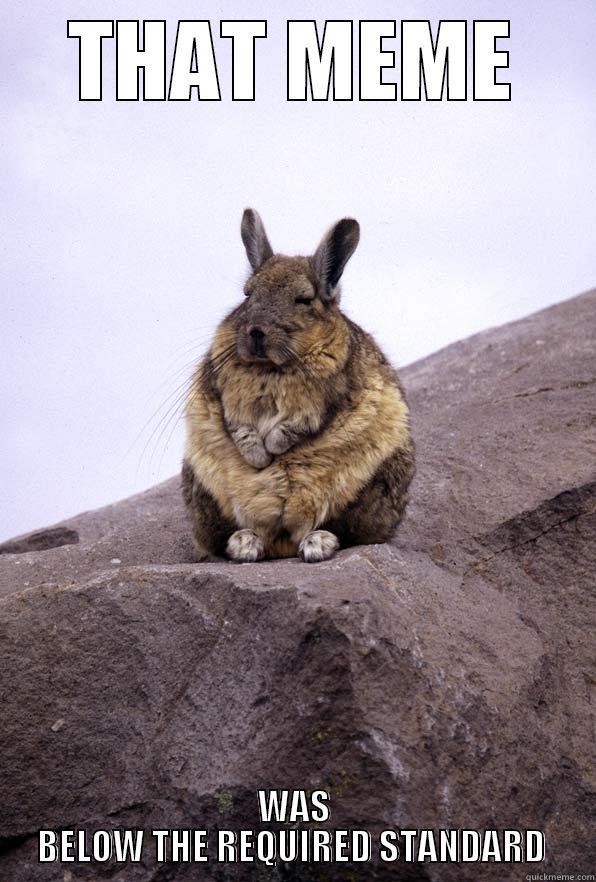 THAT MEME WAS BELOW THE REQUIRED STANDARD  Wise Wondering Viscacha