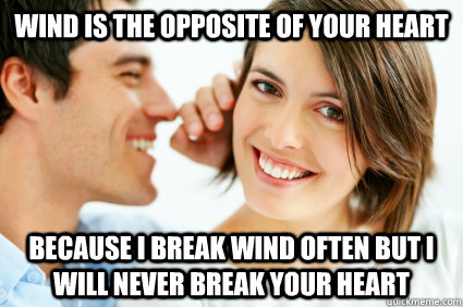 wind is the opposite of your heart because i break wind often but i will never break your heart - wind is the opposite of your heart because i break wind often but i will never break your heart  Bad Pick-up line Paul