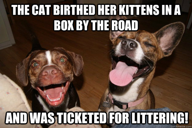 the cat birthed her kittens in a box by the road and was ticketed for littering!  Clean Joke Puppies
