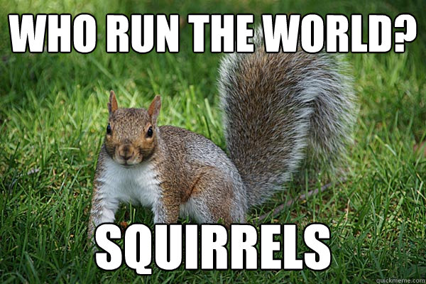 Who run the world? Squirrels - Who run the world? Squirrels  Adele