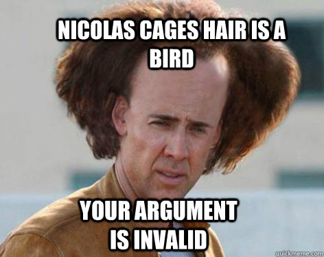 nicolas cages hair is a bird your argument is invalid