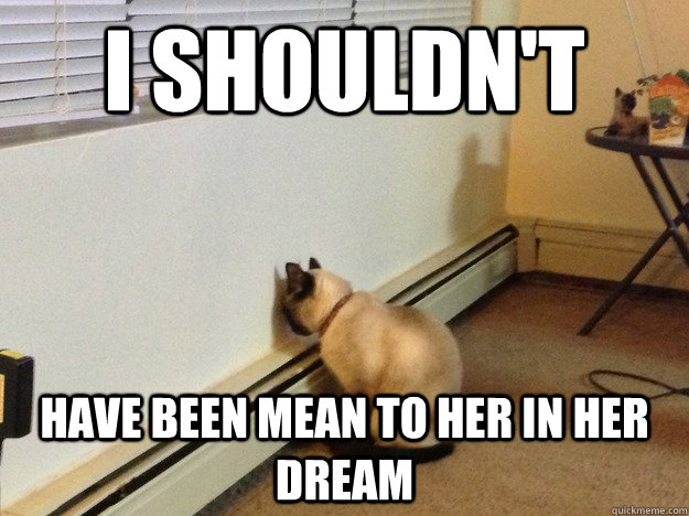I shouldn't Have been mean to her in her dream - I shouldn't Have been mean to her in her dream  Regretful Cat