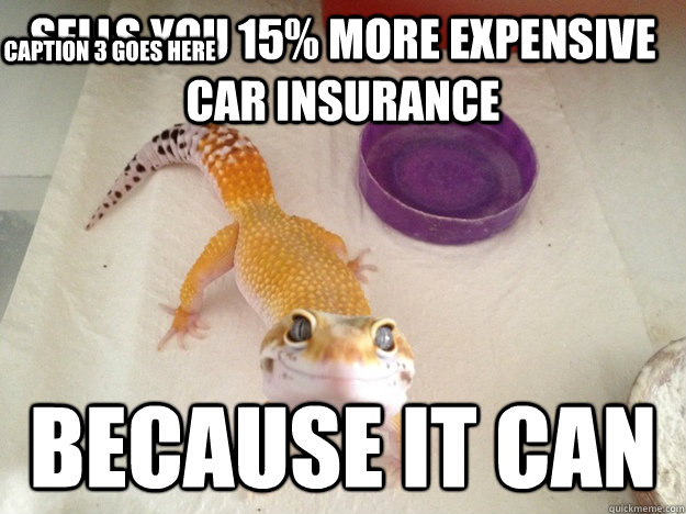 Sells you 15% more expensive car insurance because it can Caption 3 goes here - Sells you 15% more expensive car insurance because it can Caption 3 goes here  Ridiculously Photogenic Gecko