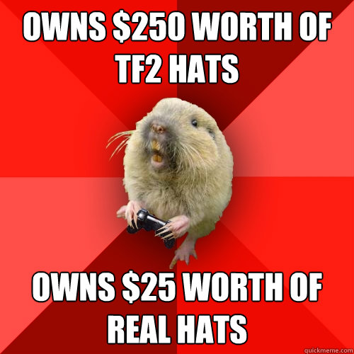 Owns $250 worth of TF2 hats Owns $25 worth of real hats  Gaming Gopher