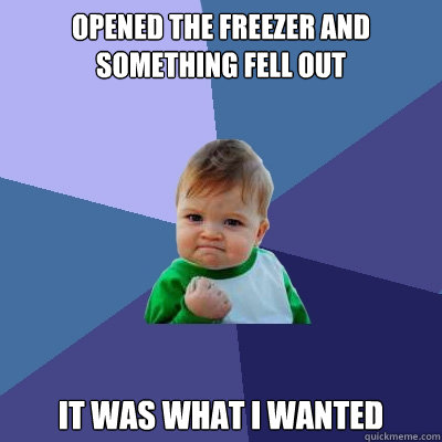 opened the freezer and something fell out it was what I wanted - opened the freezer and something fell out it was what I wanted  Success Kid