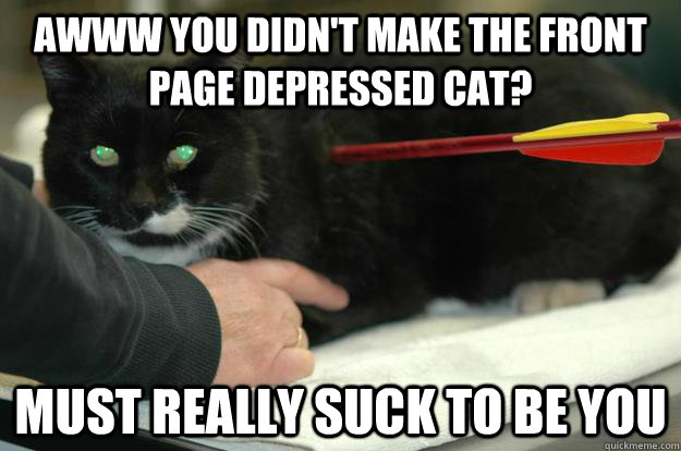 Awww you didn't make the front page depressed cat? Must really suck to be you  Worlds Toughest Cat