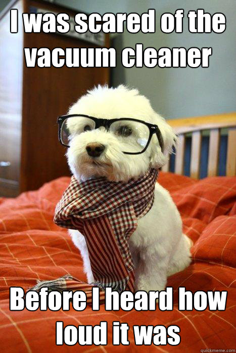 I was scared of the vacuum cleaner Before I heard how loud it was - I was scared of the vacuum cleaner Before I heard how loud it was  Hipster Dog