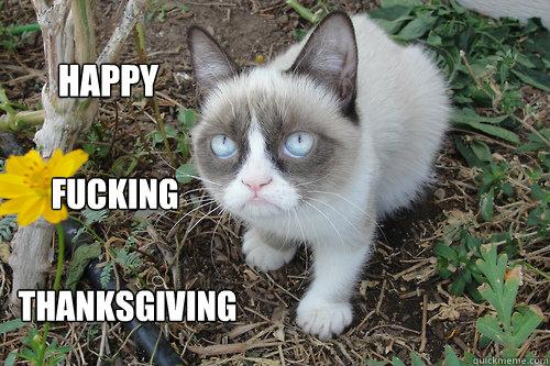 happy fucking thanksgiving