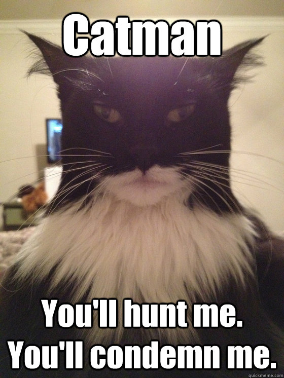Catman You'll hunt me. You'll condemn me.