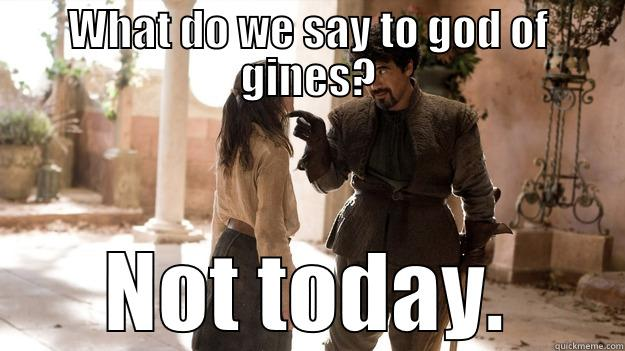 WHAT DO WE SAY TO GOD OF GINES? NOT TODAY. Arya not today