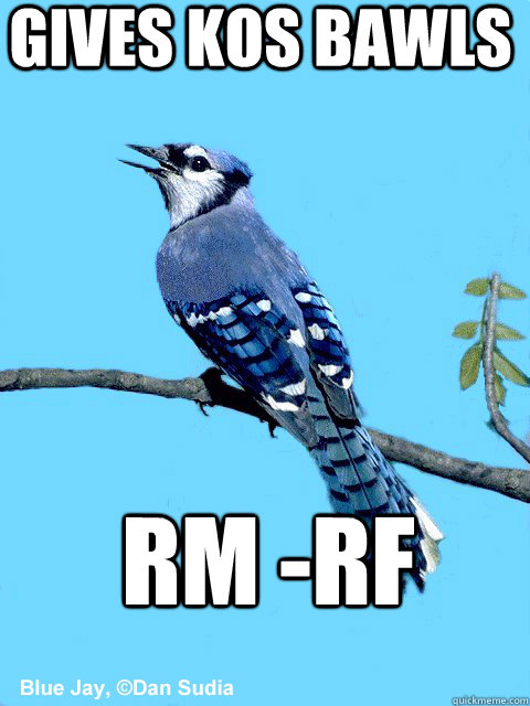 Gives KOS bawls rm -rf - Gives KOS bawls rm -rf  Blue Team Bird