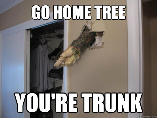 Go Home Tree You're Trunk  Sandy Drunk Tree