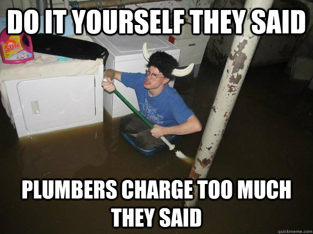 Do it Yourself they said Plumbers charge too much they said