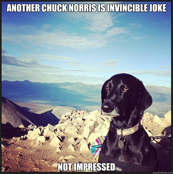 another Chuck Norris is invincible joke not impressed