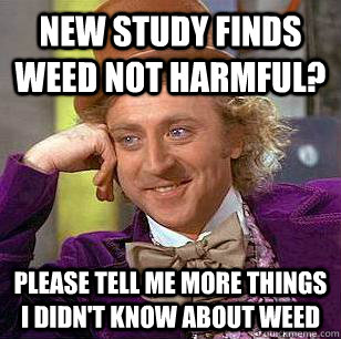 new study finds weed not harmful? please tell me more things i didn't know about weed - new study finds weed not harmful? please tell me more things i didn't know about weed  Condescending Wonka