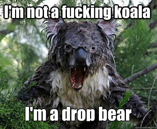 I'm not a fucking koala I'm a drop bear