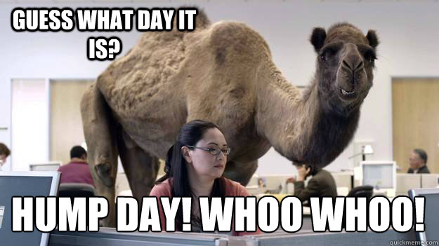 Guess what day it is? HUMP DAY! WHOO WHOO!