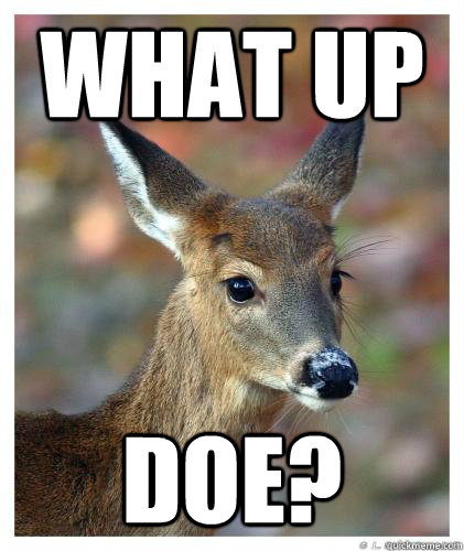 What Up Doe?  What up doe