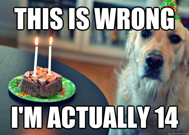 this is wrong i'm actually 14 - this is wrong i'm actually 14  Sad Birthday Dog