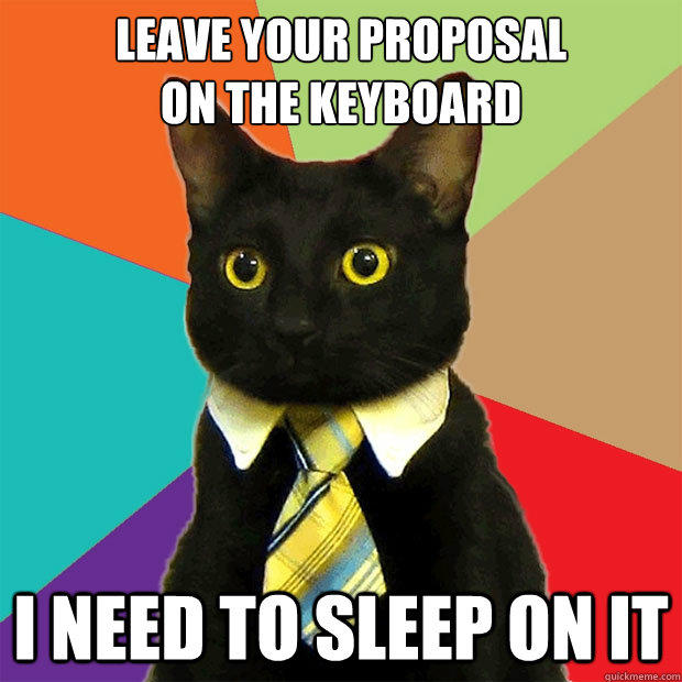 leave your proposal  on the keyboard I need to sleep on it  Business Cat