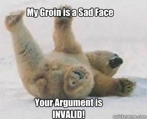 My Groin is a Sad Face Your Argument is INVALID!