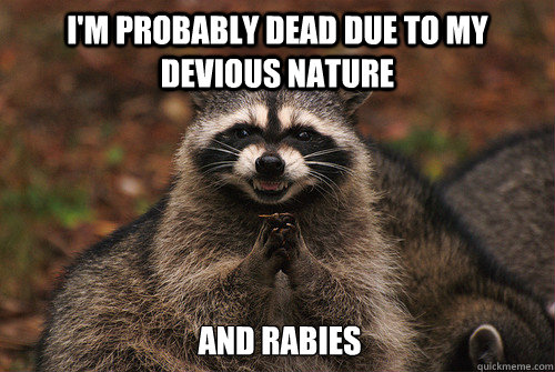 I'm probably dead due to my devious nature and rabies - I'm probably dead due to my devious nature and rabies  Insidious Racoon 2