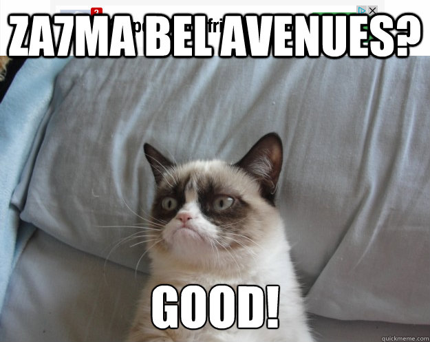 za7ma bel Avenues? good! - za7ma bel Avenues? good!  Grumpy Cat on Being Unfriended