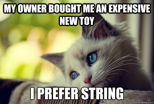 My owner bought me an expensive new toy I prefer string