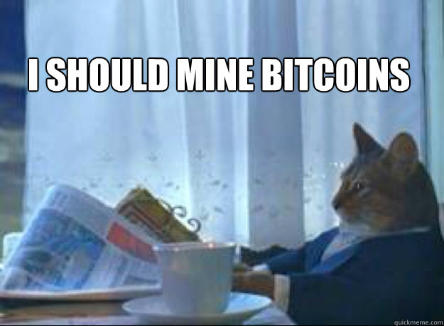 I Should mine Bitcoins  - I Should mine Bitcoins   I should buy a boat cat