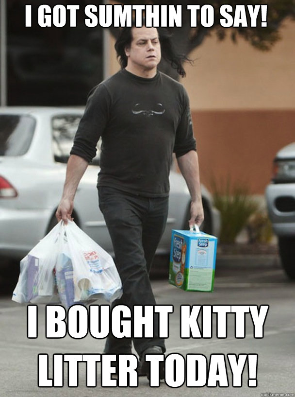 I got sumthin to say! I bought kitty litter today!  DANZIG KITTY