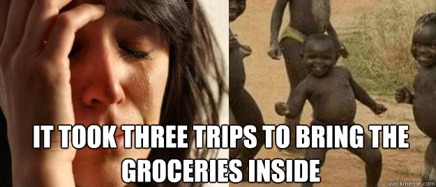 it took three trips to bring the groceries inside  - it took three trips to bring the groceries inside   First World Problems  Third World Success