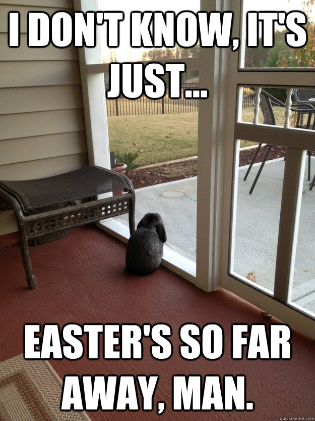 I don't know, It's just... Easter's so far away, man.  Facing Reality Bunny