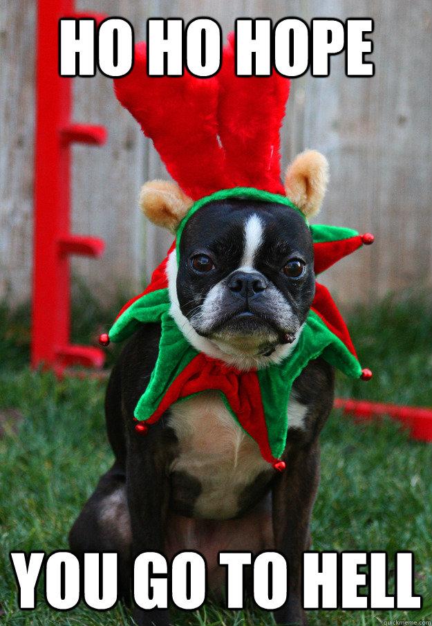 ho ho hope you go to hell  grumpy holiday dog