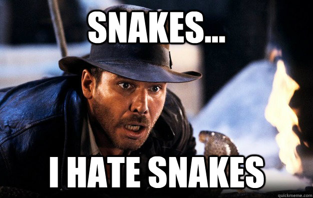 indiana jones why did it have to be snakes