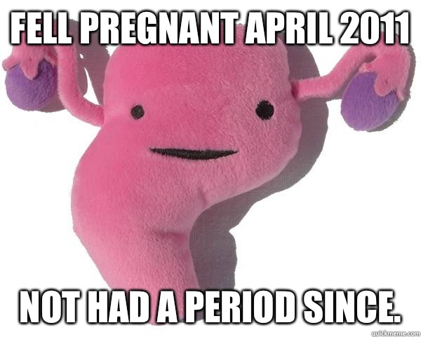 Fell pregnant April 2011 Not had a period since.   Good Guy Uterus