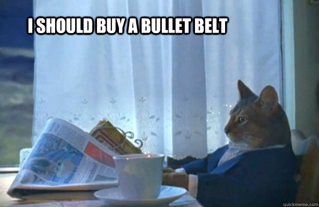 I should buy a bullet belt - I should buy a bullet belt  Sophisticated Cat