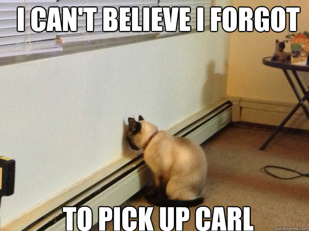 I can't believe I forgot  to Pick up carl