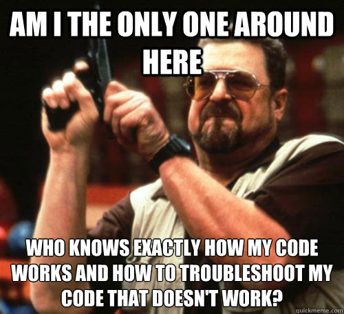 Am i the only one around here Who knows exactly how my code works and how to troubleshoot my code that doesn't work? - Am i the only one around here Who knows exactly how my code works and how to troubleshoot my code that doesn't work?  Am I The Only One Around Here