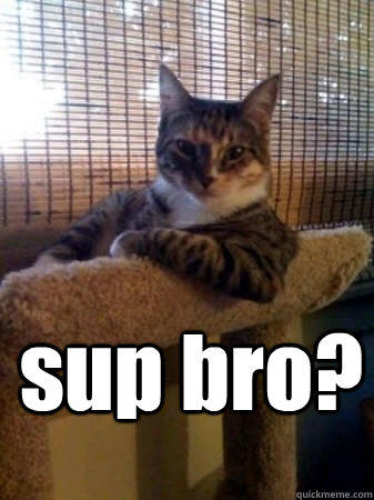e25aaba81dcfe43554d5f3304ff1543ba9c72a9a27ff47b78ed681a1afb51278 sup bro? the most interesting cat in the world quickmeme,Sup Meme